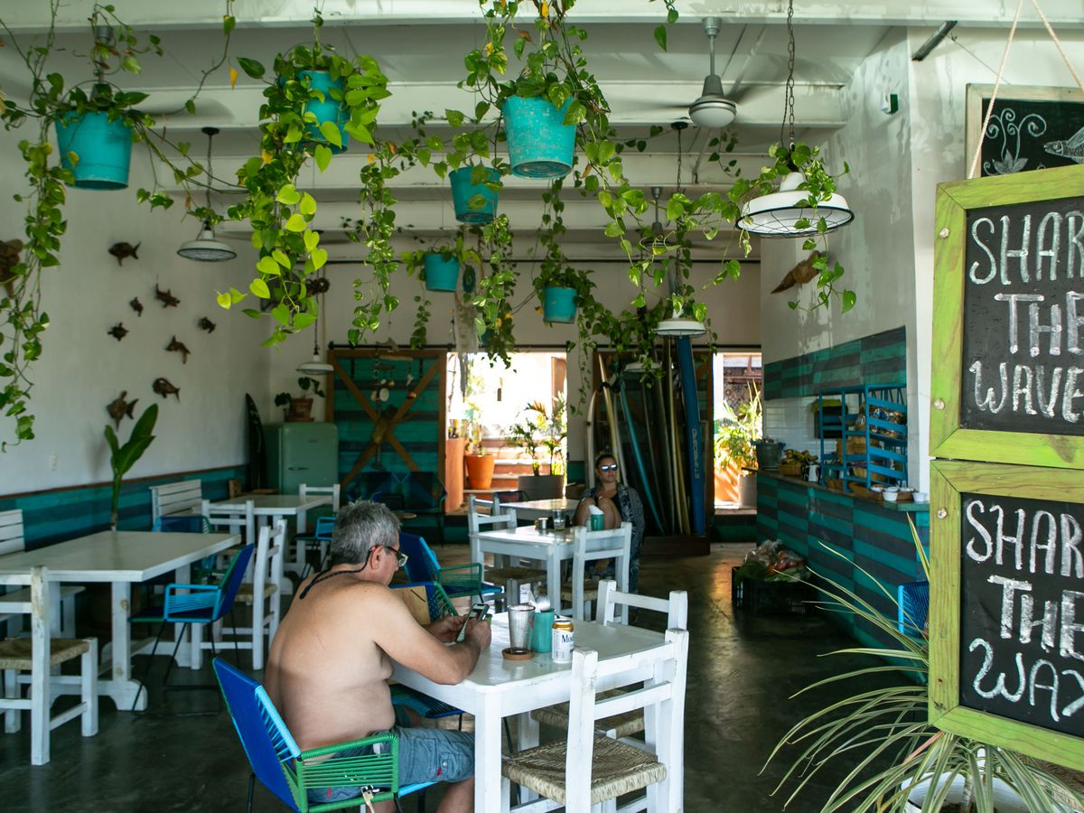A shirtless man in swim trunks sits in a dining room with plants hanging from the ceiling.