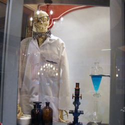 This skeleton has been with Kiehl's longer than most employees.