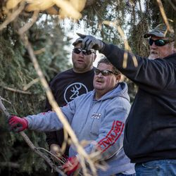 Sean Drake, left, and his brother in-law, Lyle Bair, center, talk with Todd Egbert, owner of Hang M High Crane Service, as they remove one of two large pine trees that were felled by high winds in Bair's yard in Washington Terrace on Tuesday, Jan. 19, 2021. One of the trees fell on Bair's home, damaging the carport, a car and other items.