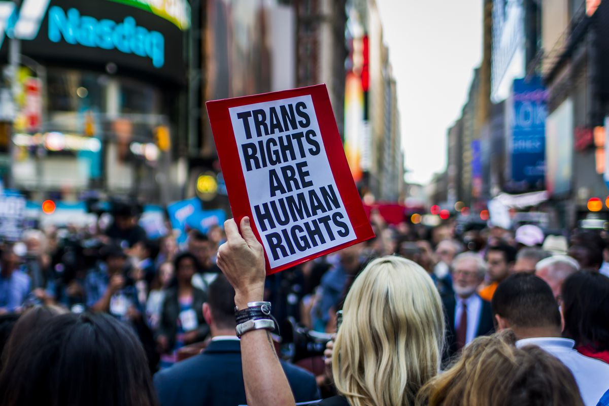 """A protester in a crowd holds a sign that reads """"Trans rights are human rights."""""""