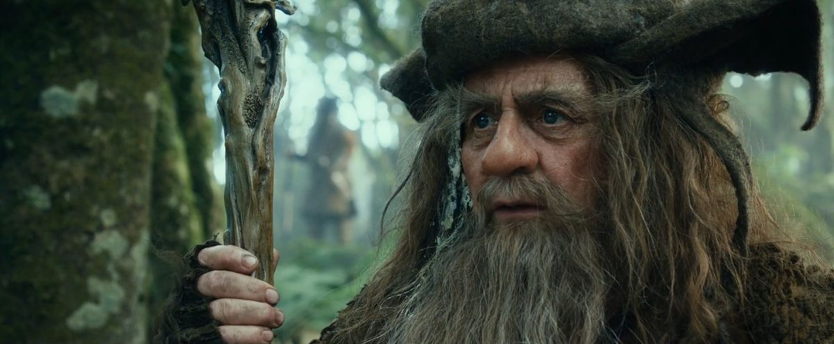 Radagast the Brown looks confused in The Hobbit: An Unexpected Journey.