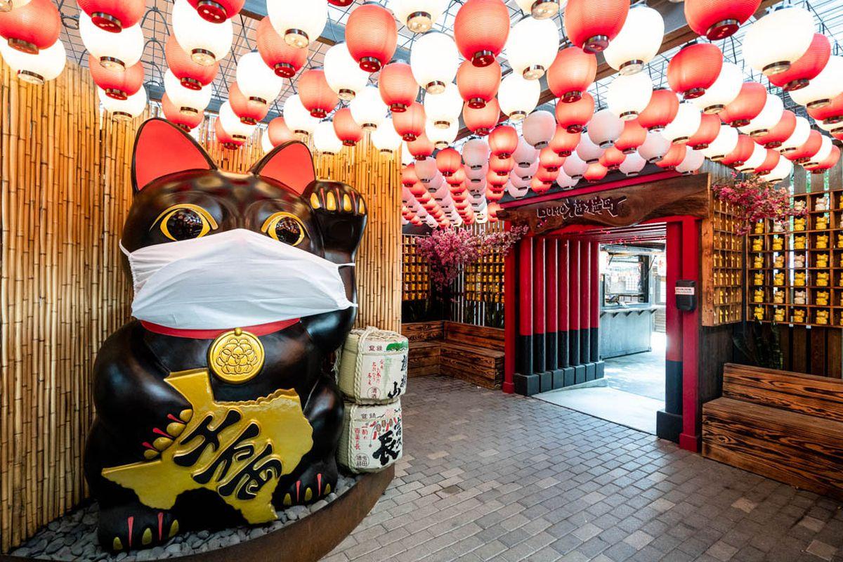Ramen Tatsu-ya on East Sixth took over the patio of its next-door restaurant Domo Alley-Gato, operating under half-dining capacities