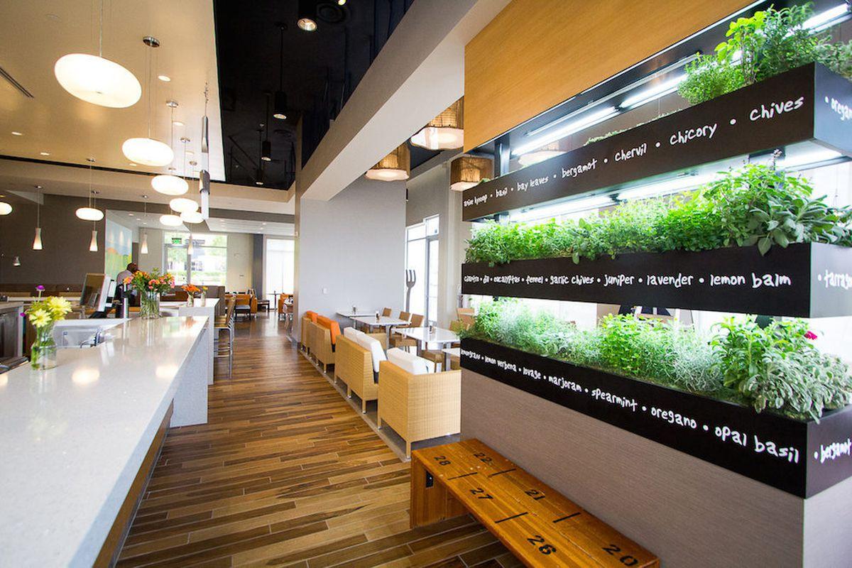 Behold The Herb Garden At Lyfe Kitchen Eater Vegas