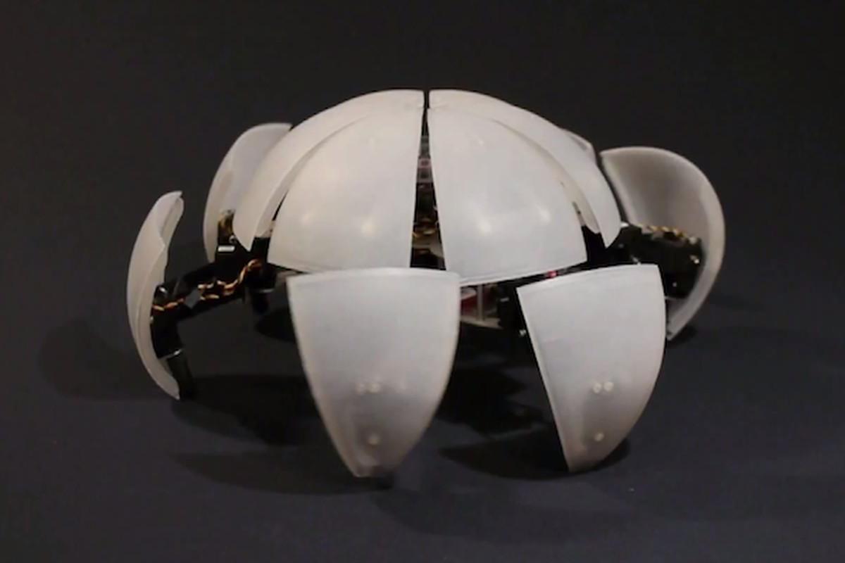 MorpHex robot ball 640