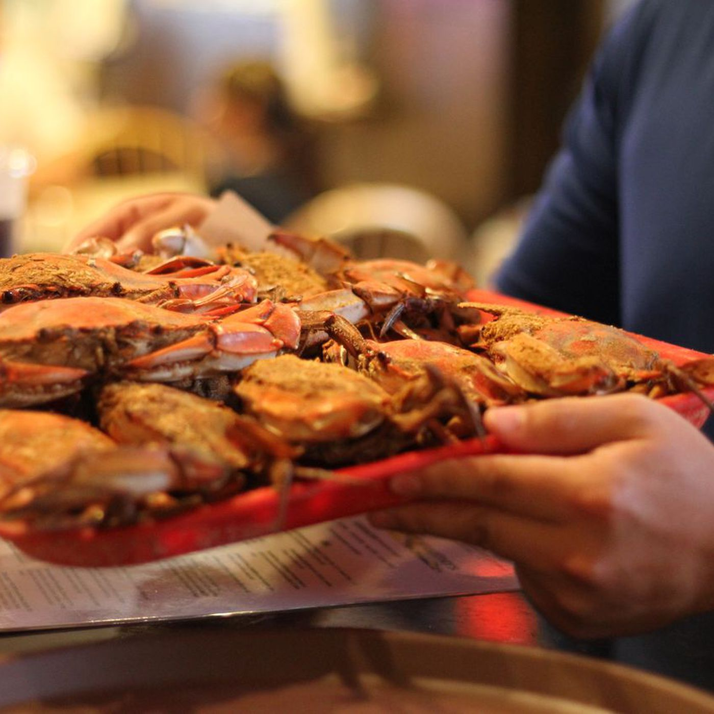 Maryland Crabs A Guide To The East Coast S Essential Summer Feast Eater
