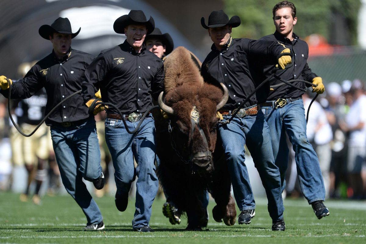 There is no doubt about it - Ralphie is one awesome mascot