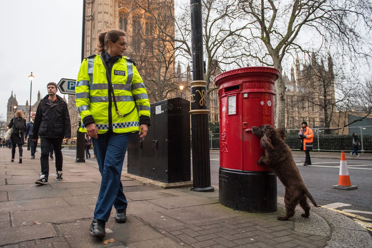 Security Is Stepped-Up For The New Year's Celebrations