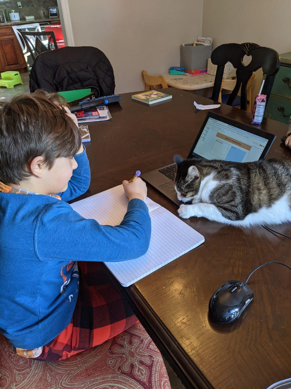 Tristan writing in a notebook working on class work while the family cat lays on his laptop.