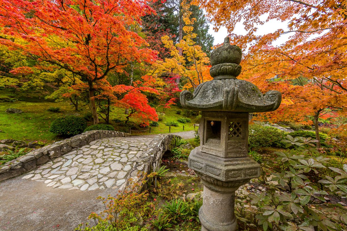 Seattle Japanese Garden will be free on First Thursday afternoons ...