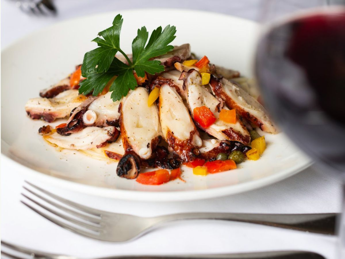 Grilled octopus dish on white plate