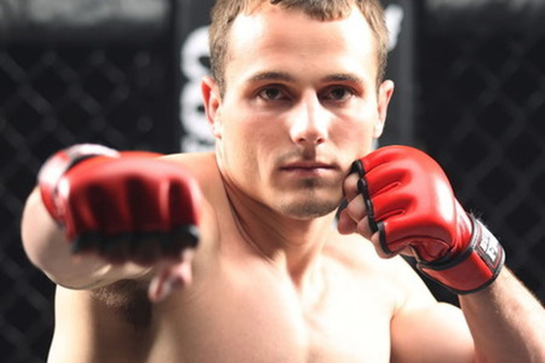 TUF 15 contestants gay porn background - Page 2 — boards