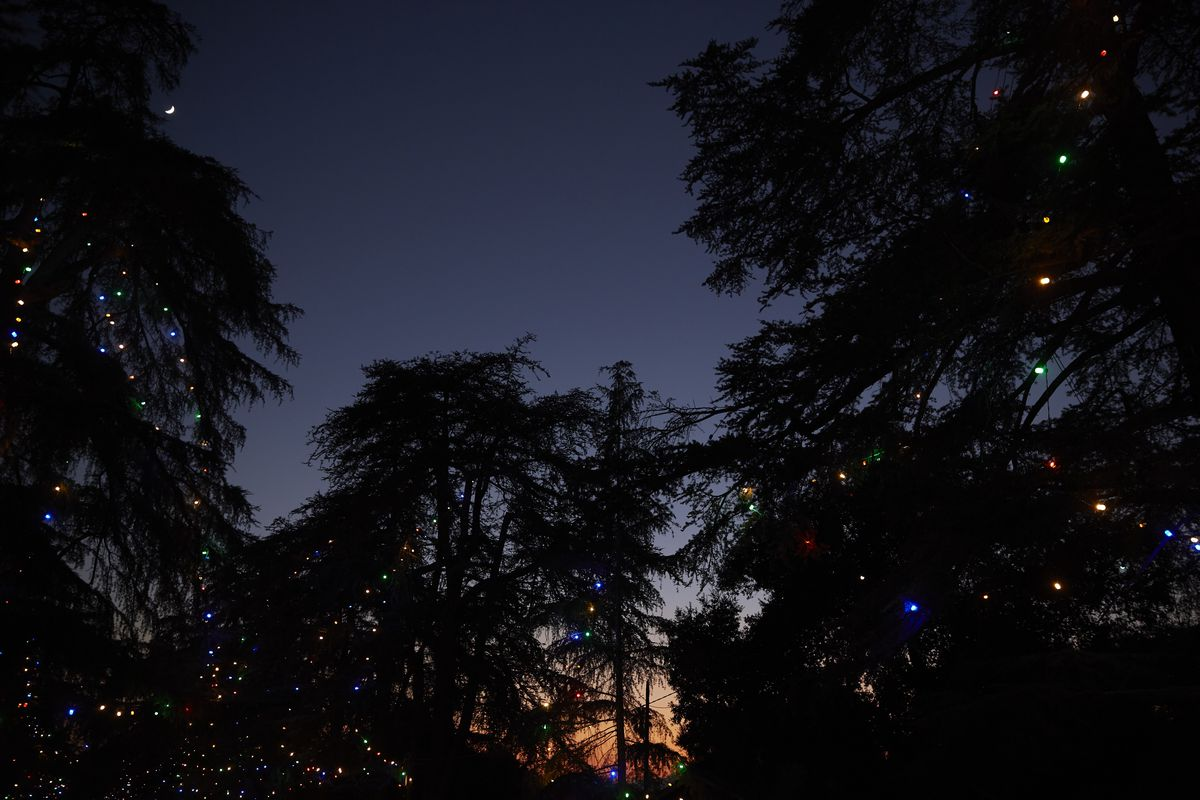 The Spectacle Of Altadena S Christmas Tree Lane Curbed La