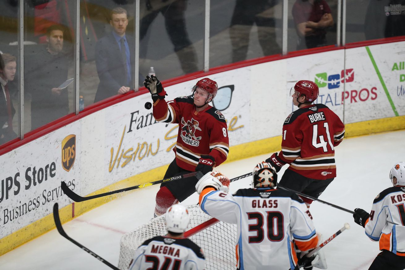 Tucson Roadrunners: Things to watch for ahead of 2019 home opener