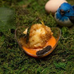 Restaurant North's hazelnut encrusted egg with ramp and morel fricassee.