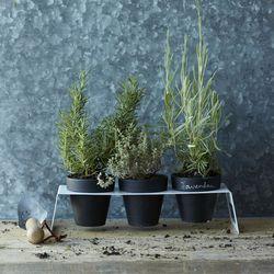 "<strong>West Elm</strong> Chalkboard Planter Set with Stand, <a href=""http://www.westelm.com/products/mrk-planter-pot-holder-d633/?pkey=call-market-garden&cm_src=all-market-garden||NoFacet-_-NoFacet-_--_-"">$39</a>"
