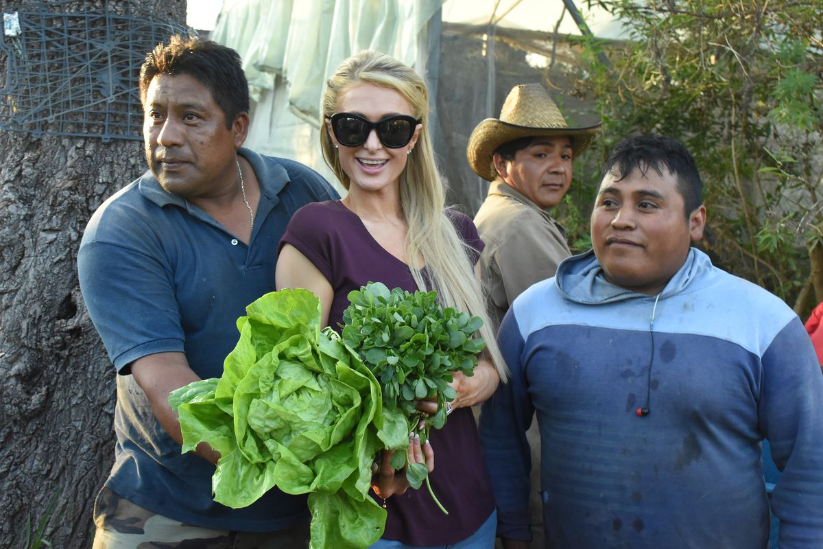 Paris Hilton Visited Mexico And The Memes In Spanish Are Out Of Control