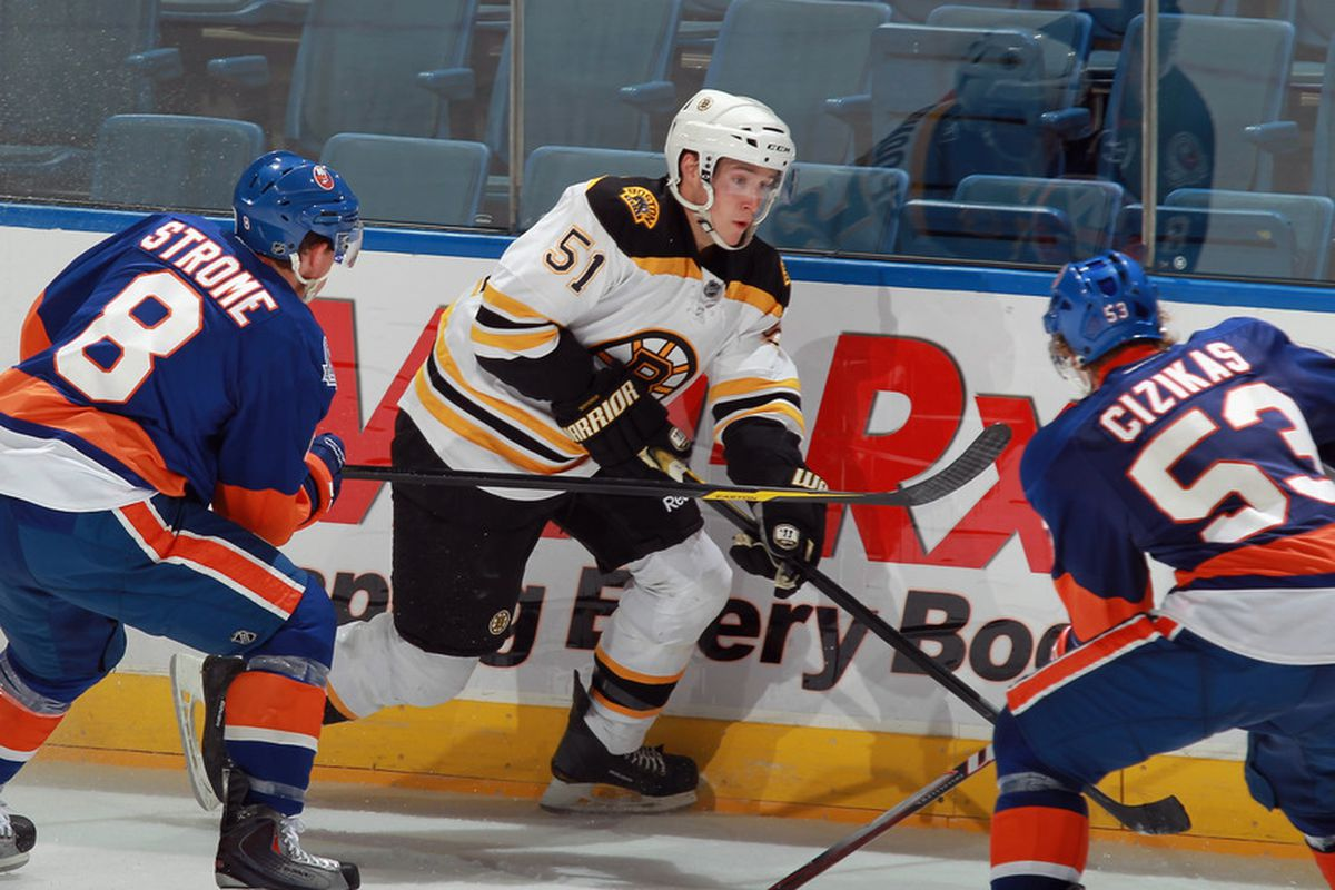 A German Shepherd and a pitbull pursue Ryan Spooner of the Bruins.