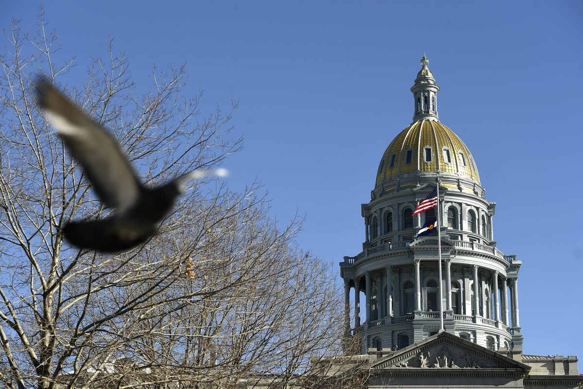 The Colorado state Capitol, with a bird flying in front of a nearby tree.