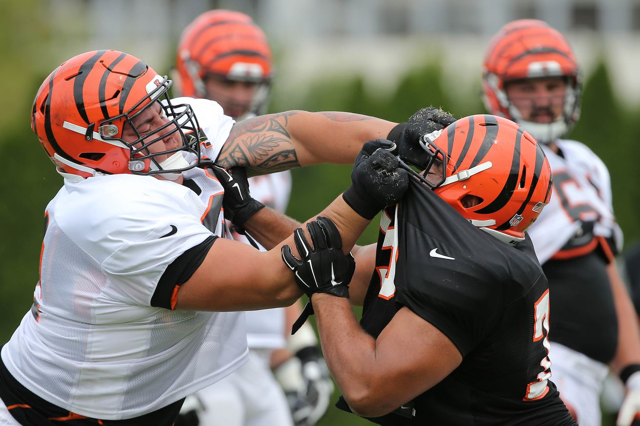 Bengals training camp preview Part 1: Offensive line battles