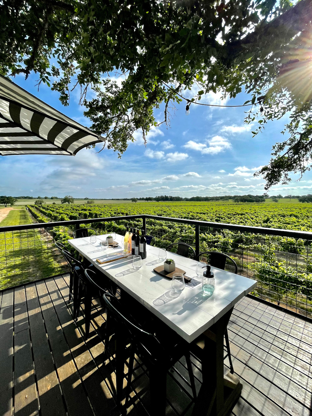 An outdoor patio with a table and chairs overlooking green vineyards.