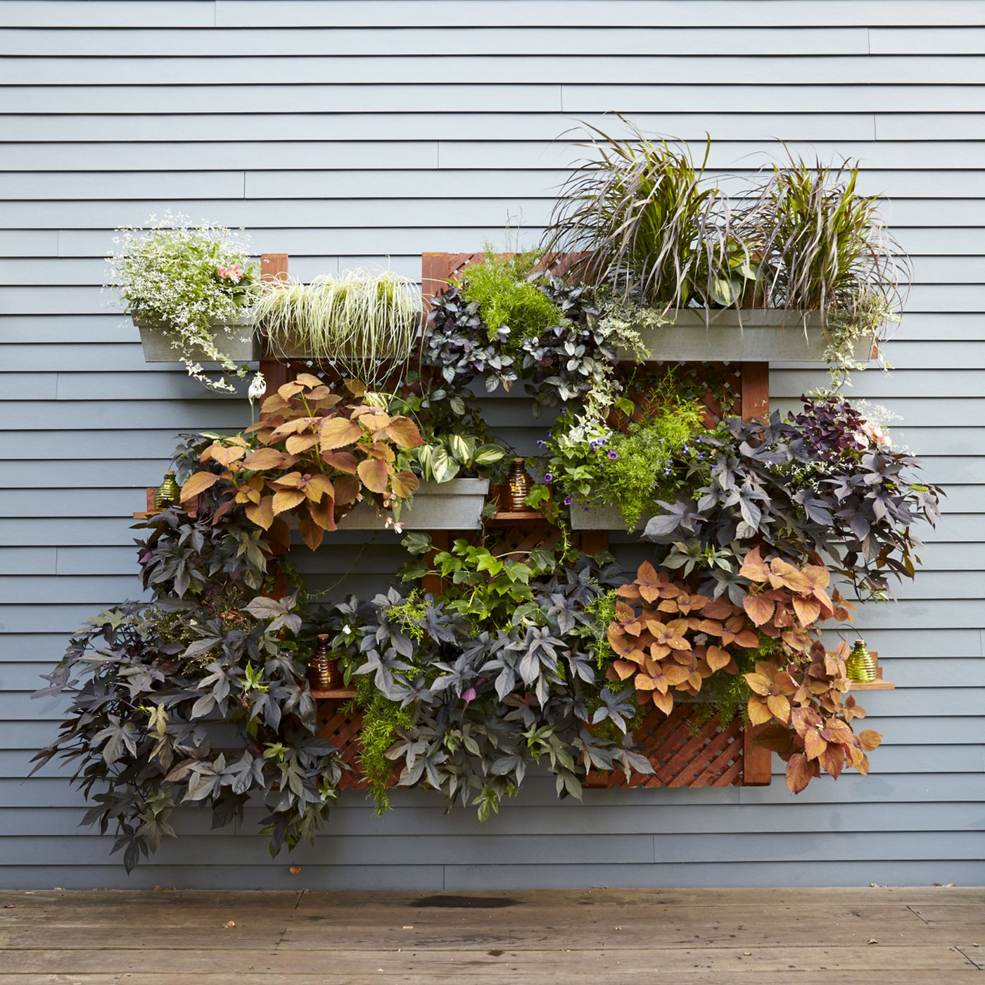 How To Build A Living Wall Vertical Garden This Old House