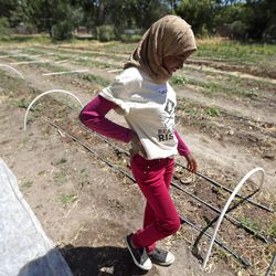 Samia Ibrahim walks through the Real Food Rising farm in Salt Lake City on Wednesday, July 13, 2016.
