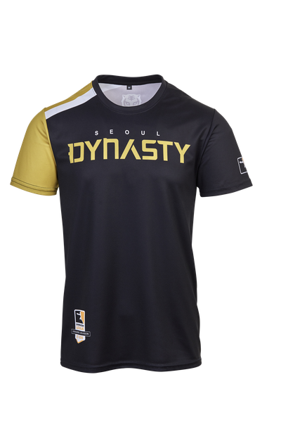 Seoul Dynasty jersey