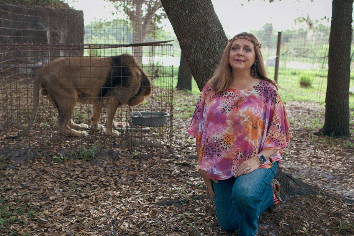 Carole Baskin kneels in front of a lion in an enclosure in a still from Tiger King