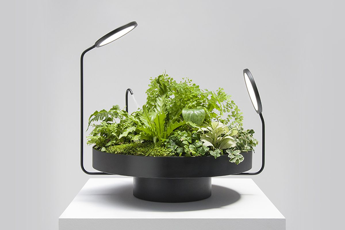 A black steel planter with a broad round base, two LED light panels placed at different angles toward the plants, and a humidifier pointed at the plants.