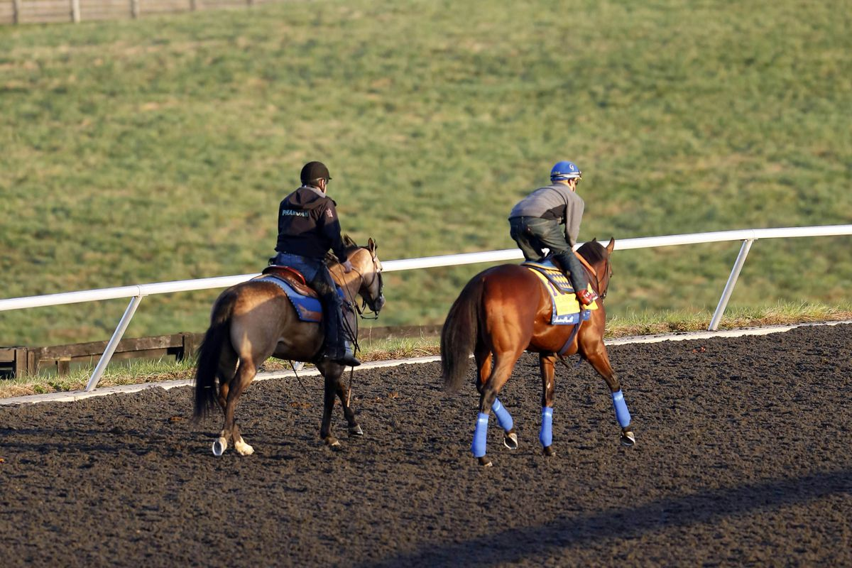 Breeders Cup 2015 Live Stream How To Watch Friday S