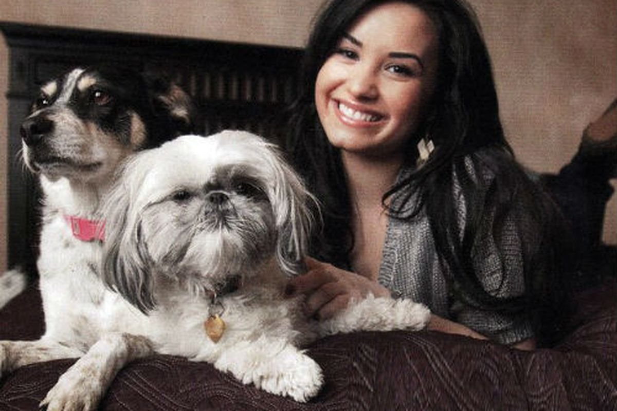 """Image of Demi Lovato via James Jeans/<a href=""""https://www.facebook.com/photo.php?fbid=10152117759093099&amp;set=a.416279638098.191821.205177453098&amp;type=1&amp;theater"""">Facebook</a>"""
