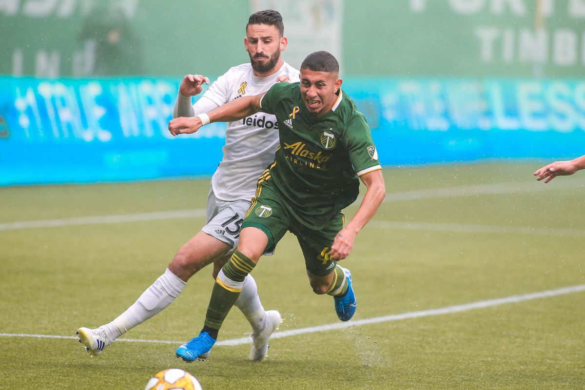 Portland Timbers lose 1-0 to D.C. United in unfortunate fashion