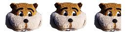 Goldy Head - 2.75