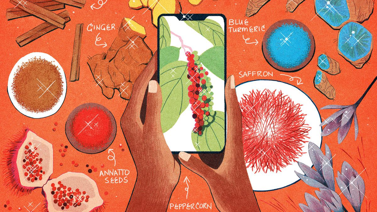 Hands hold an iPhone above an array of spices