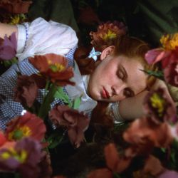 """Dorothy (Judy Garland) in """"The Wizard of Oz."""""""