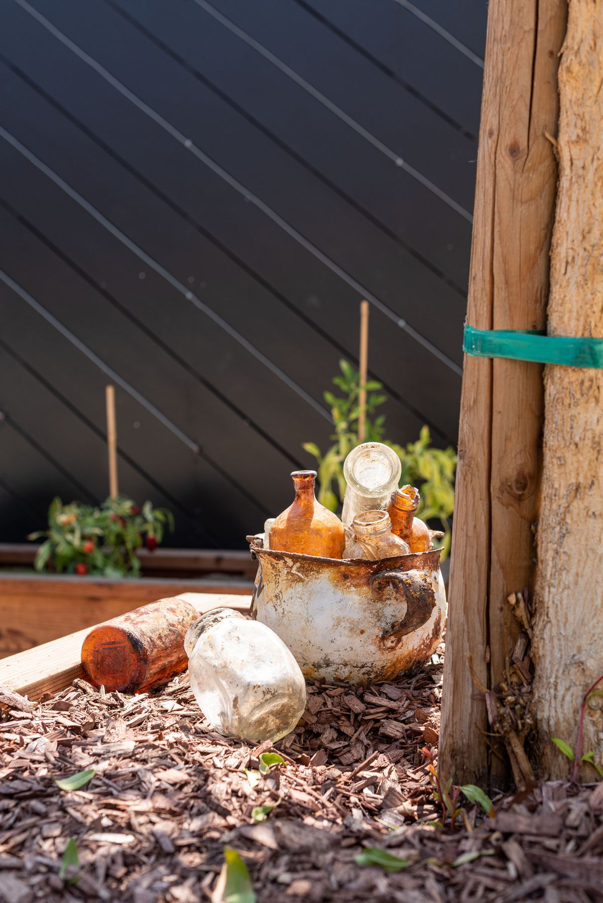 Rusted metal pot and old glass inside of a new garden.
