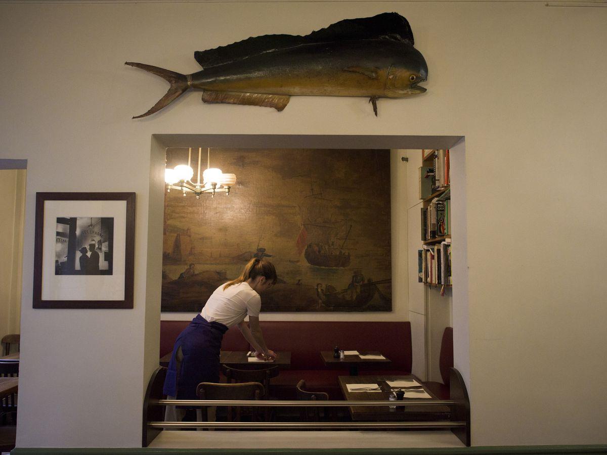 A server, seen through a wall cutout beneath a stuffed fish, prepares tables