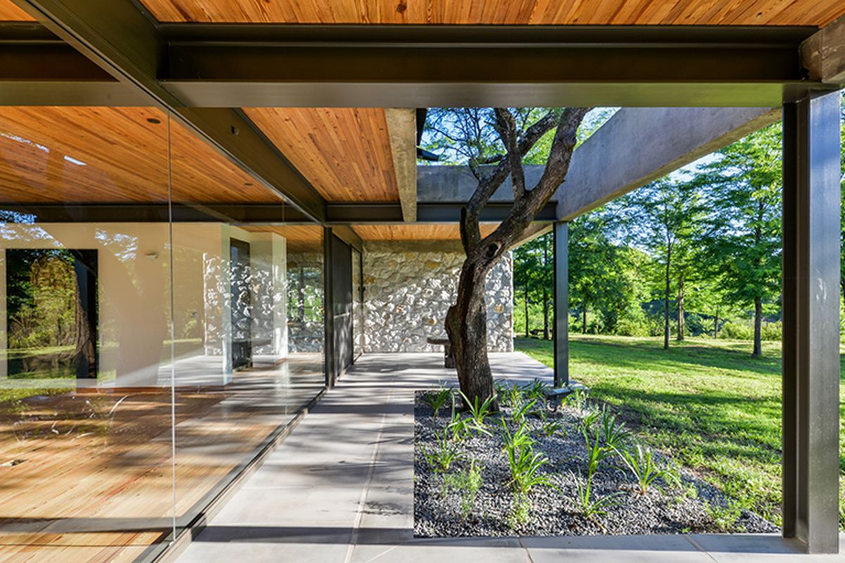 Exterior shot of side of house featuring wall of windows, steel beams, wood-paneled ceilings that extend as an overhang outside, and a tree planted outside that pokes through an opening in the roof.