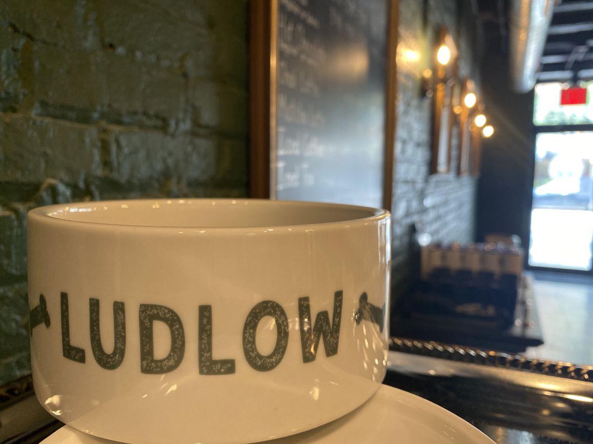A ceramic dog bowl that says Ludlow