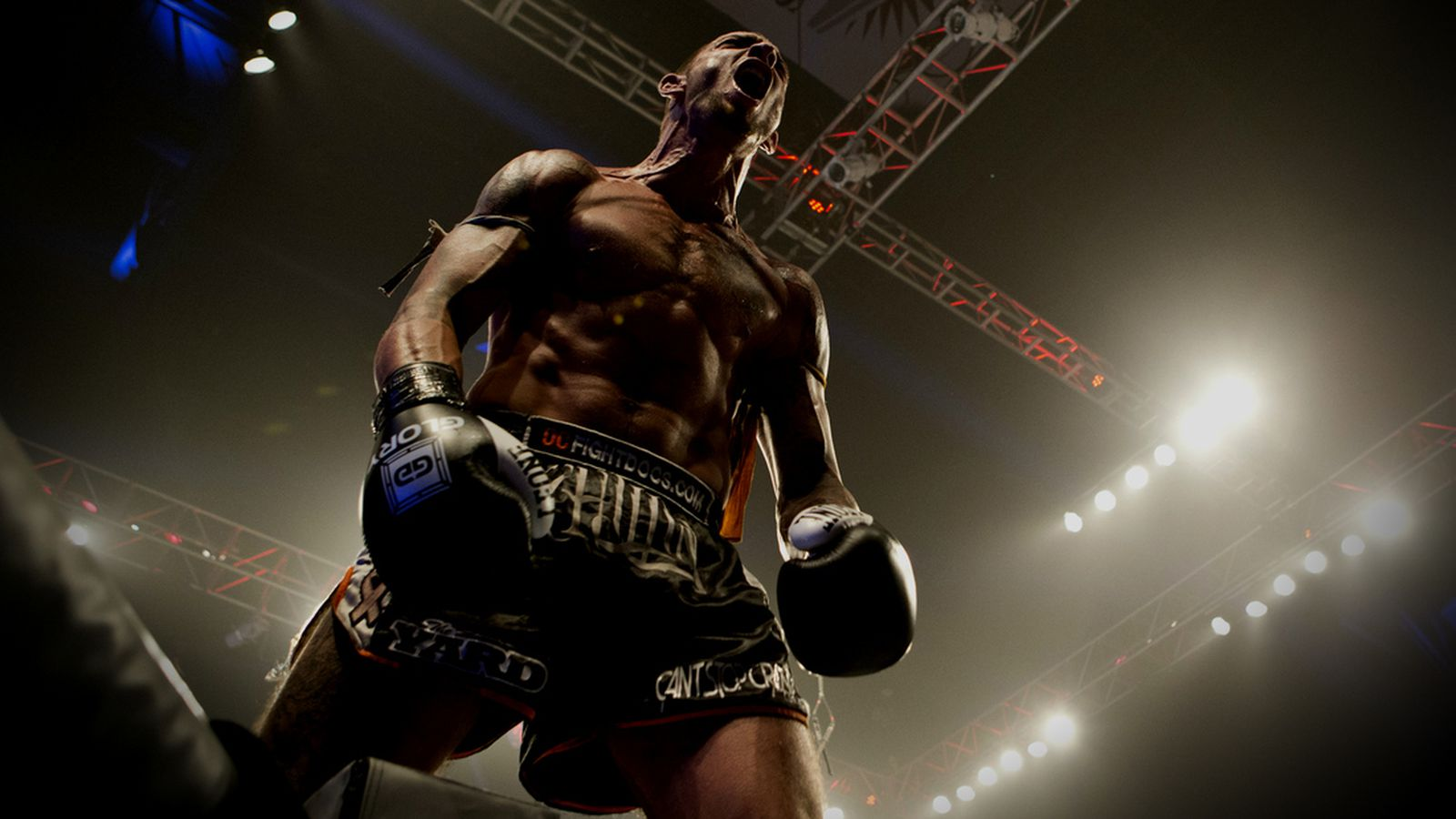 Can\'t Stop Crazy - MMAmania.com