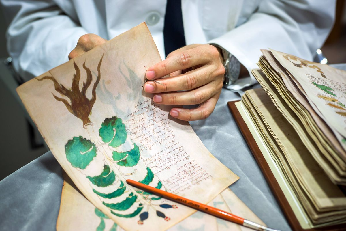 AI didn't decode the cryptic Voynich manuscript — it just added to