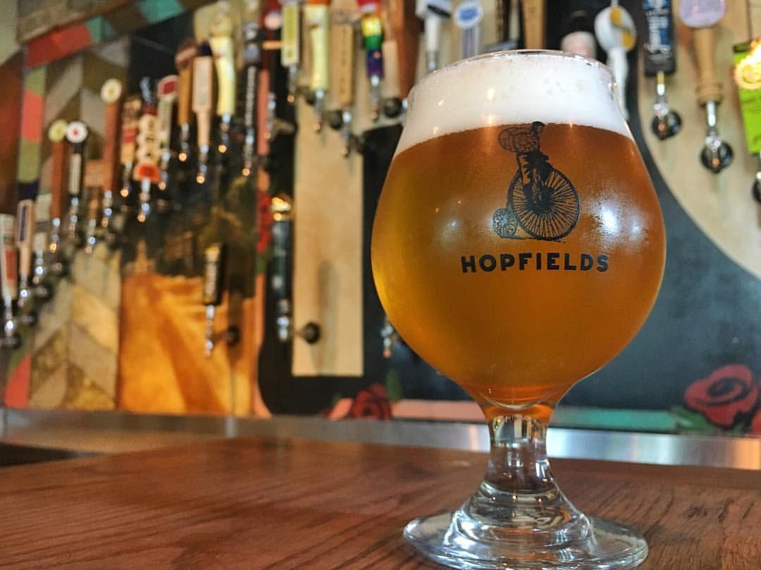 A beer at Hopfields