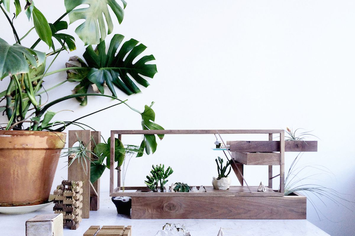 Plant-in MINI by Huy Bui—All photos courtesy of Sight Unseen unless otherwise noted