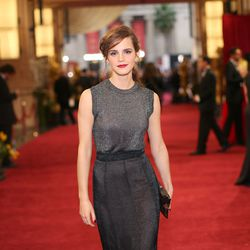 Emma wore a shimmering gray gown to the 2014 Oscars.
