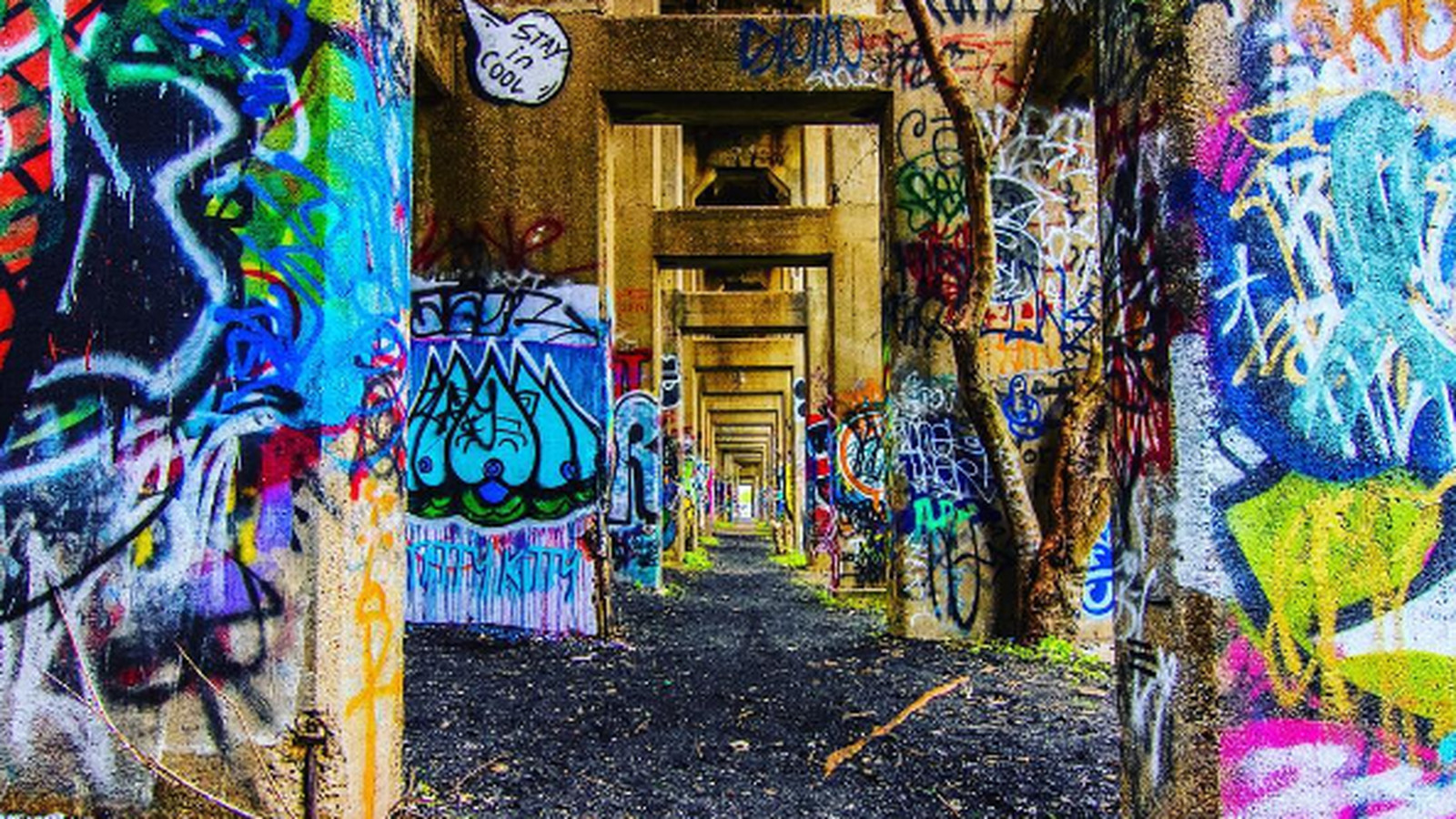 The 15 Most Instagrammable Spots In Philadelphia Curbed