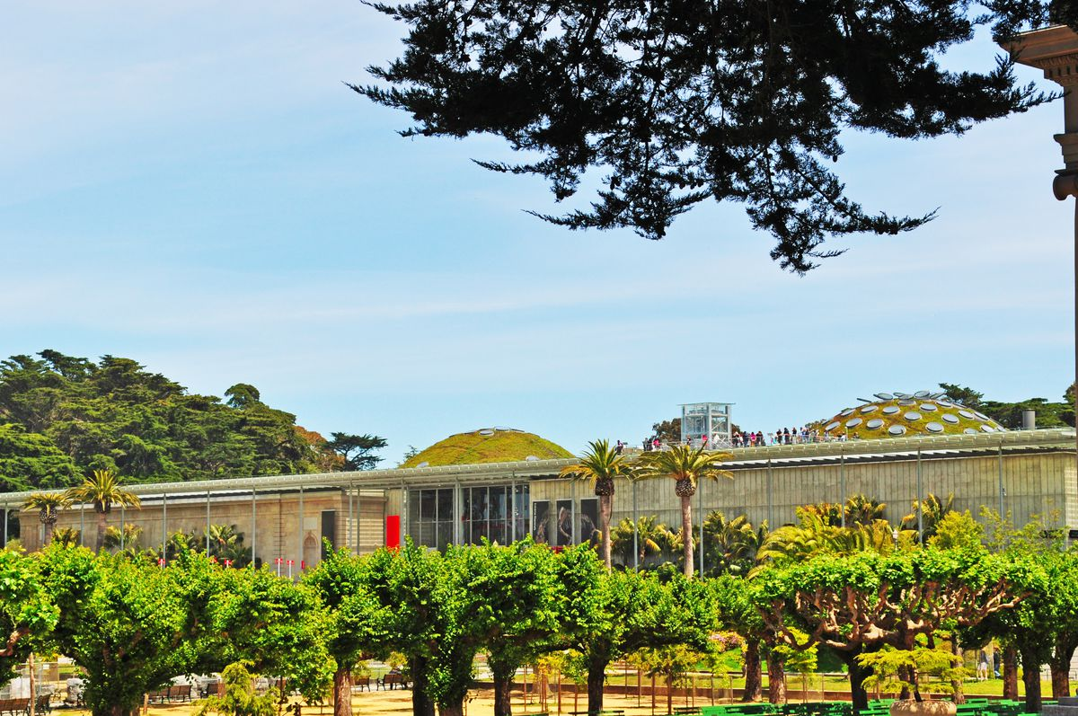 The exterior of the Morrison Planetarium in San Francisco. The roof has multiple domes which have plants growing on their surface. In the front of the building are trees and plants.