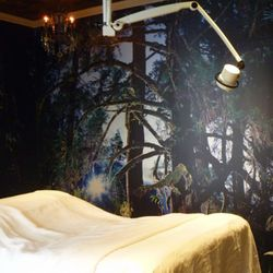 The Rainforest Room. David LaChapelle took that photo of his farm in Maui.