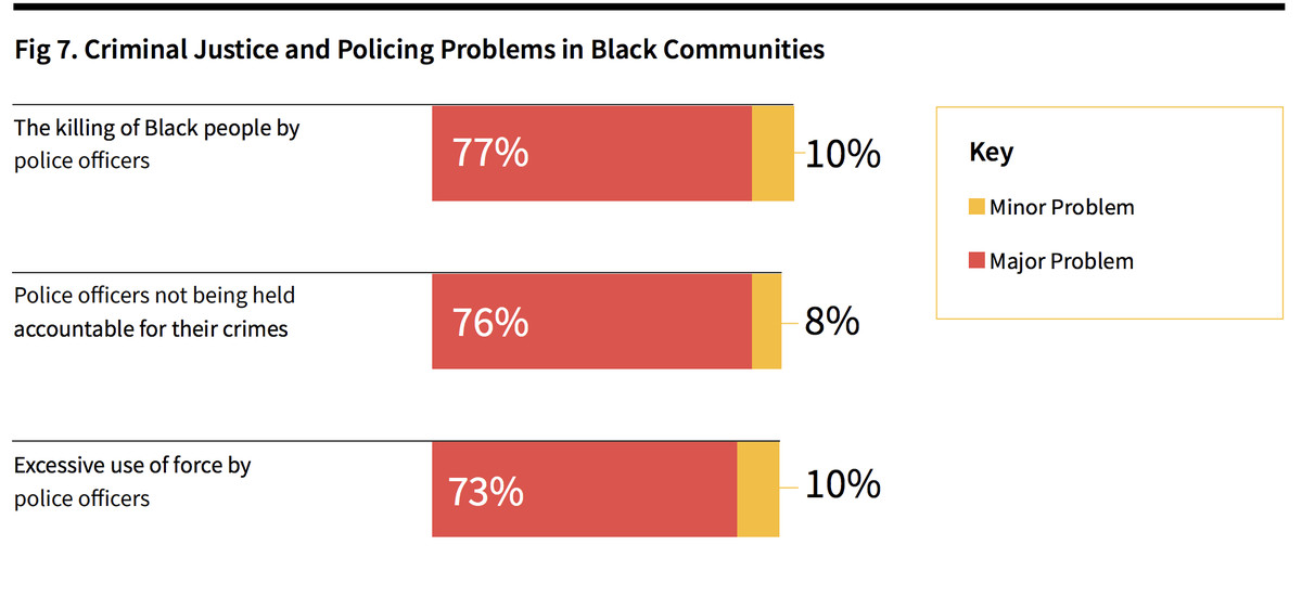 Black Census respondents believe that police violence continues to be a serious issue for their communities.