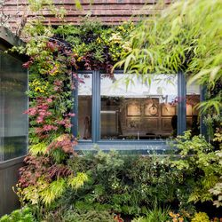 """The living walls featured conifers, cascading maples, mosses and forest understory. [Photo by <a href=""""http://www.patriciachangphotography.com/"""">Patricia Chang</a>]"""