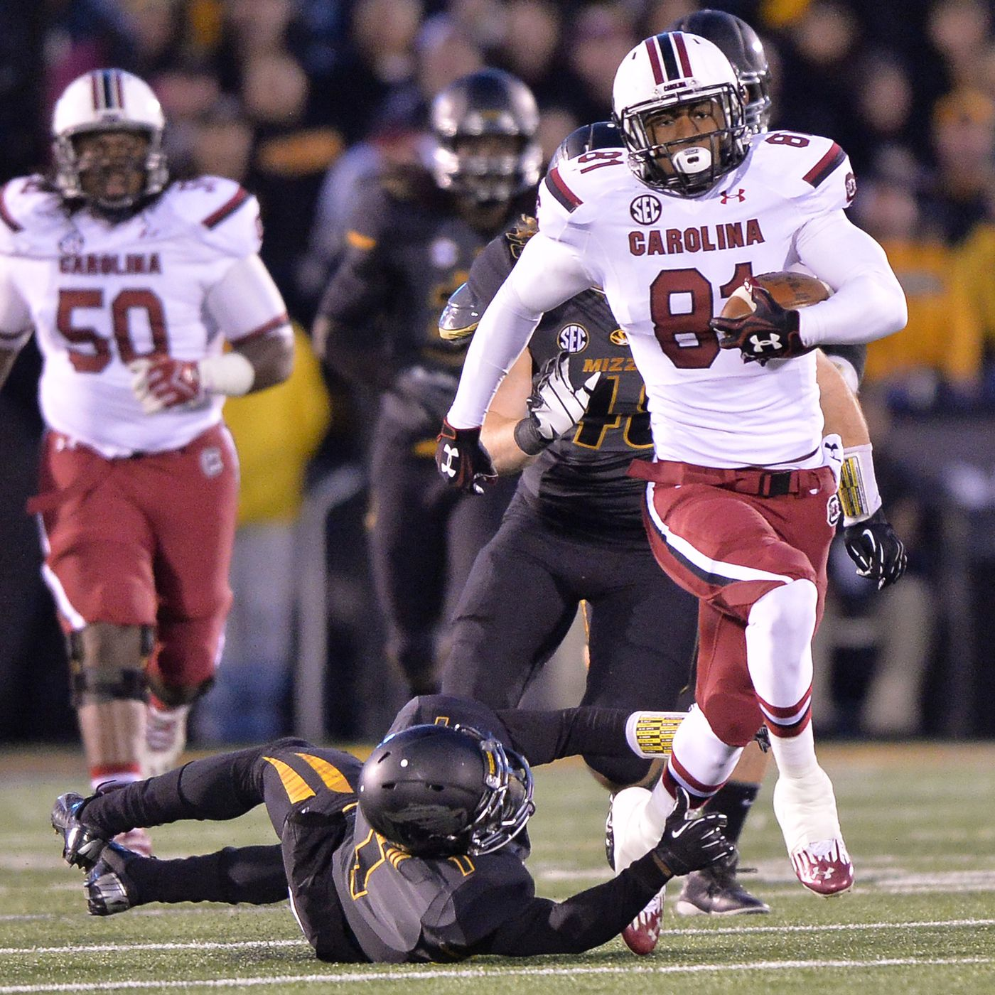 Rory Anderson injury: South Carolina tight end may be back before the  season, says Spurrier - Garnet And Black Attack